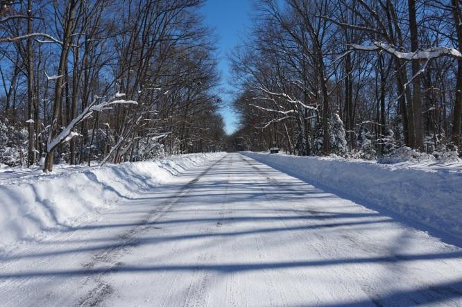 snowzilla 099